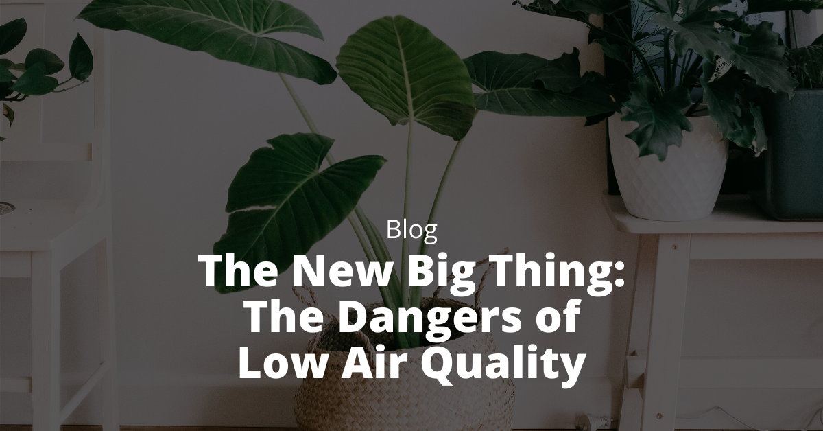 The New Big Thing: The Dangers of Low Air Quality